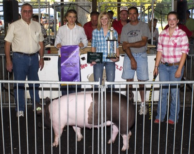 Cattle Auctions on Mercer County Fair Livestock Auction Results